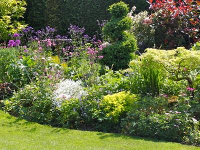 Stuart Chambers: Garden Design And Consultancy